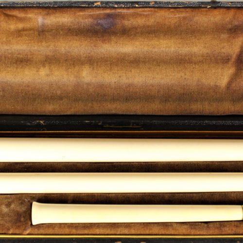 Bone Cane owned by Napoleon Bonaparte