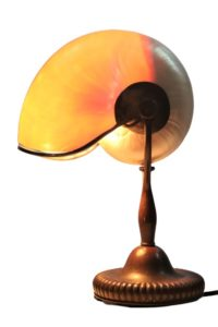 Tiffany Studios Bronze & Nautilus Shell Lamp